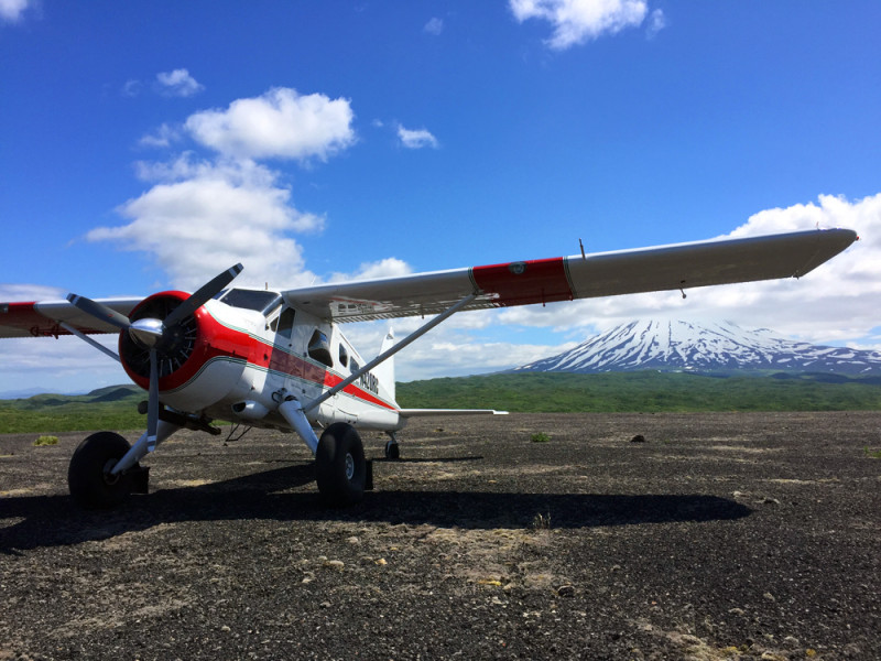 Escape to the backcountry in a DeHavilland Beaver with Trygg Air in Alaska